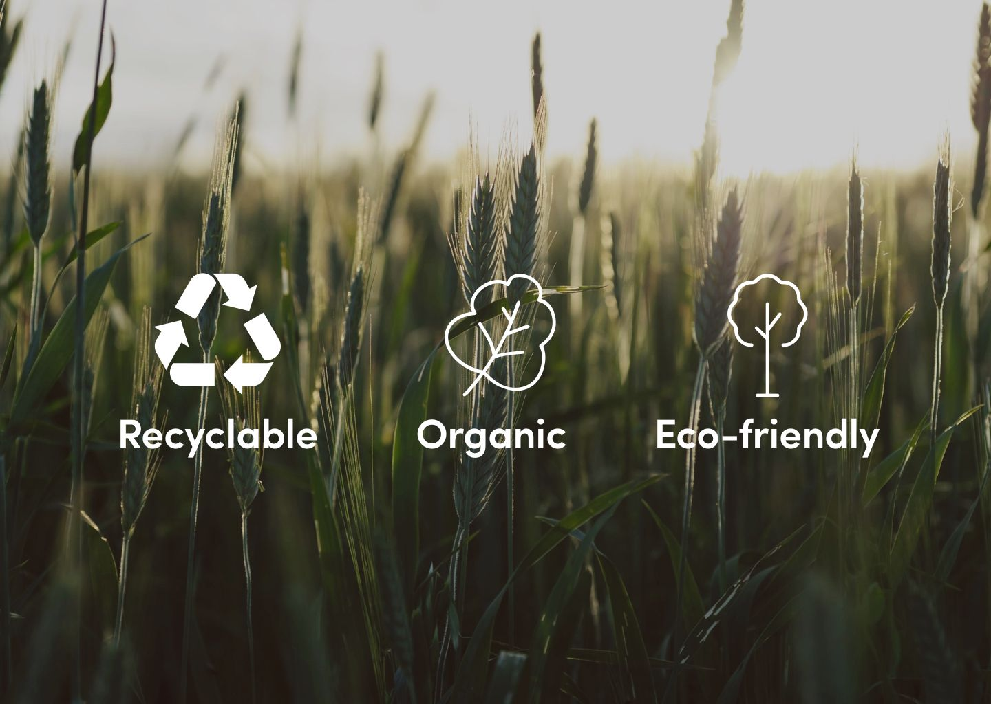 A quick guide to becoming an eco-friendly fashionista